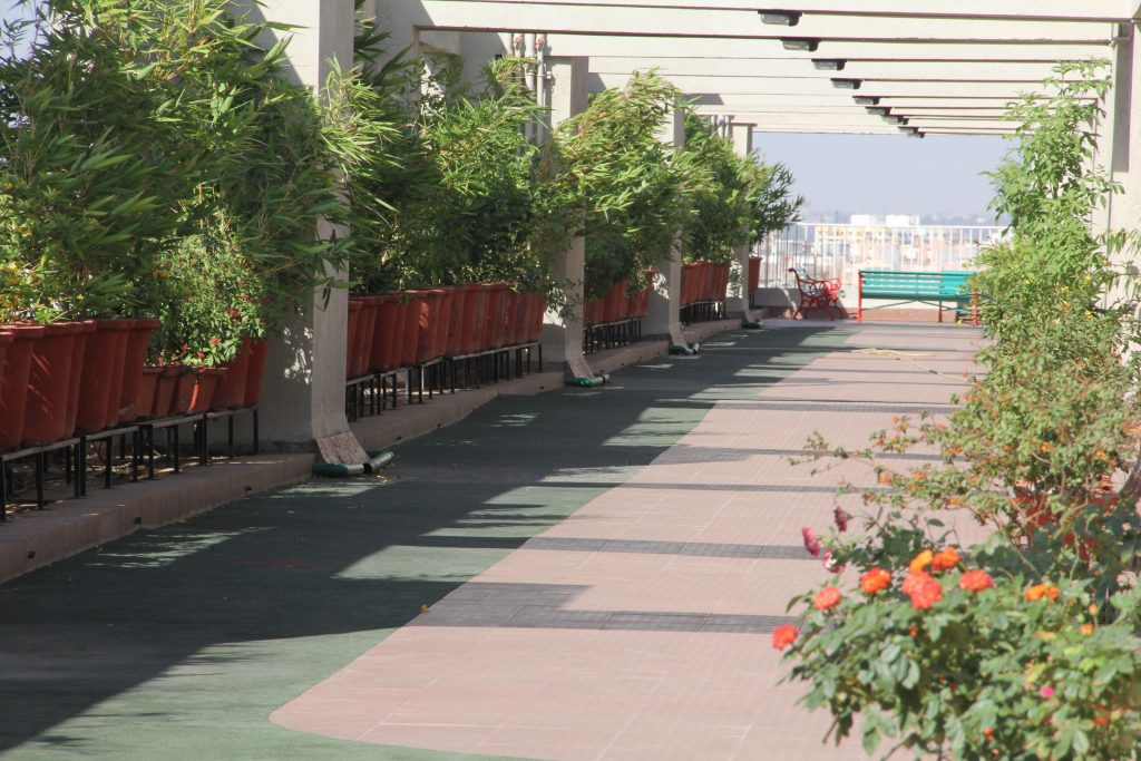 Terrace Walking SkyPark